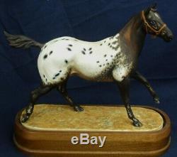 Royal Worcester Horse APPALOOSA STALLION Doris Lindner ltd edt 750 circa 1968